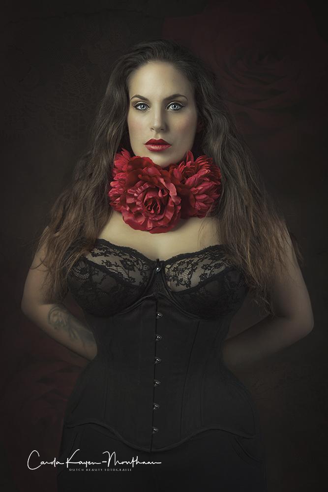 red roses art